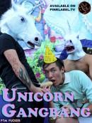 Unicorn-box