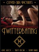 twitterbatng box art