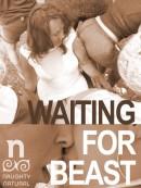 waitingforbeastbikesmut-naughtynaturalsboxart