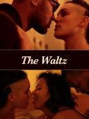 waltz-artbox