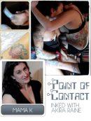 PointofContact-BoxArtinkedakiraraine